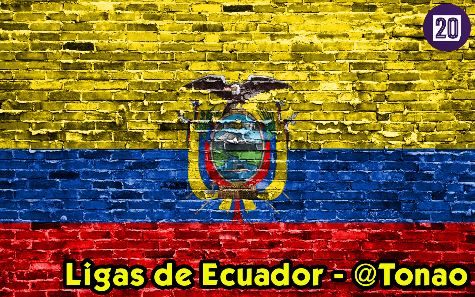 Football Manager 2020 Ecuador